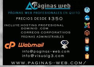 Paginas web profesionales en quito