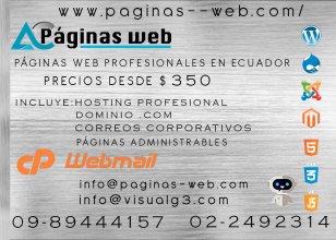 Paginas web profesionales en ecuador